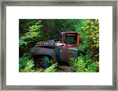 The Lost Delivery Framed Print by Ron Haist