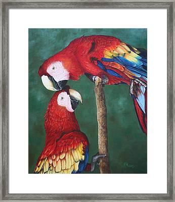 The Love Birds Framed Print by Pam Kaur