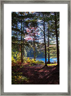 The Love Of Autumn And Cary Lake Framed Print