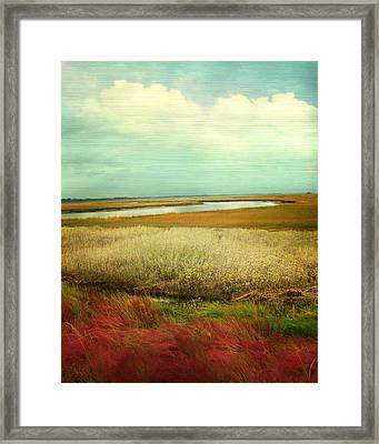 The Low Country Framed Print by Amy Tyler