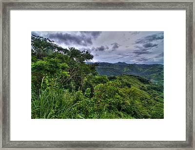 The Lush Greens Of Costa Rica Framed Print by Andres Leon