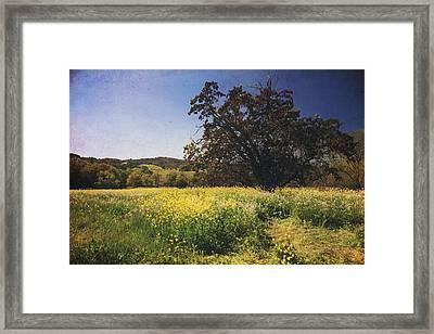 The Magic Field Framed Print