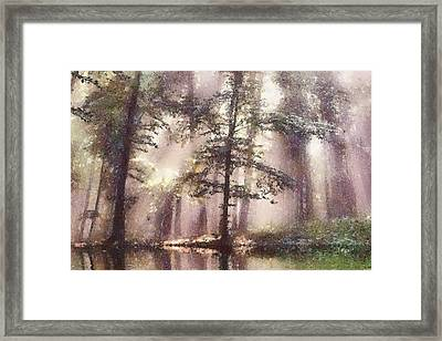 The Magic Forest Framed Print by Odon Czintos