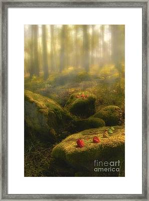 The Magic Forest Framed Print by Veikko Suikkanen