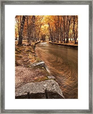 The Magic Of Fall Framed Print