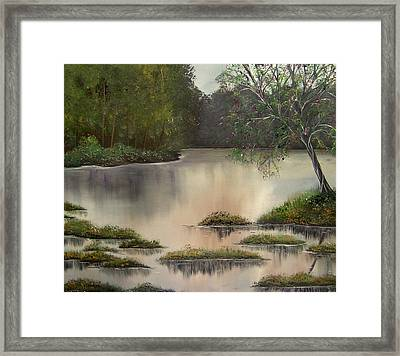 The Magic Of You Framed Print by Lisa Aerts
