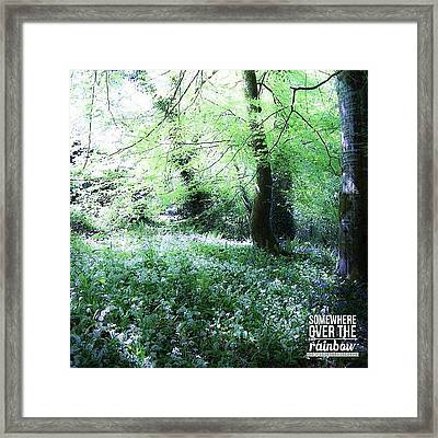 The Magical Forest Around Blarney Framed Print