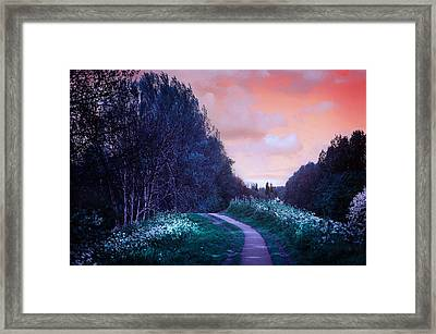 The Magical Path Framed Print by Jenny Rainbow