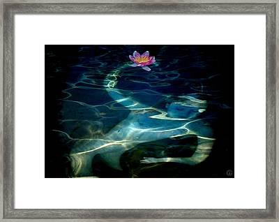 The Magical Pond Framed Print by Gun Legler