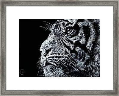 The Magnificent Framed Print by Nathan Cole