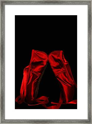 The Magnificant Obsession Framed Print by Renee Anderson
