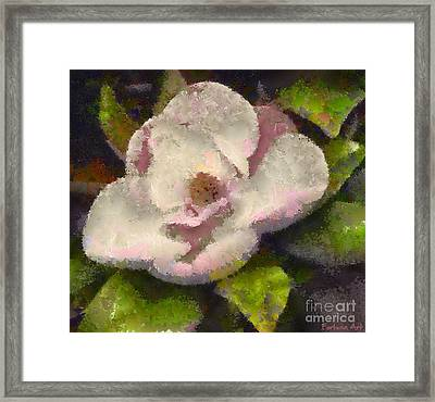 The Magnolia Flower Framed Print by Dragica  Micki Fortuna