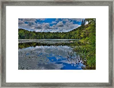 The Majestic Cary Lake Framed Print