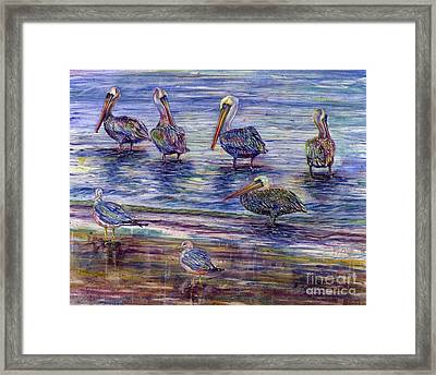 The Majestic Pelican Visit Framed Print