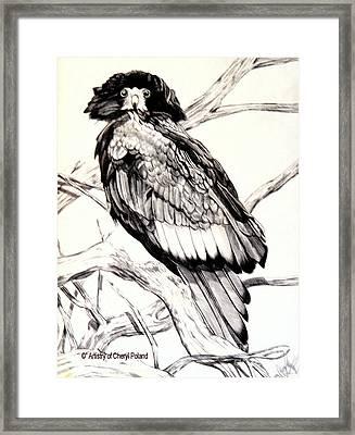 The Majestic Russian Stellar Eagle Framed Print by Cheryl Poland
