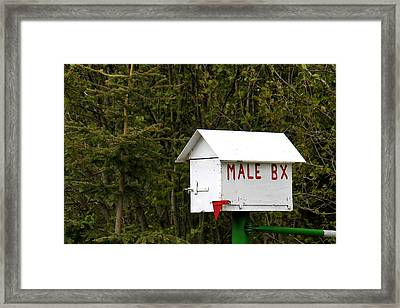 The Male Box Framed Print by Art Block Collections