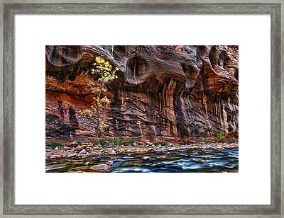 The Mall On The Narrows Framed Print by Juan Carlos Diaz Parra
