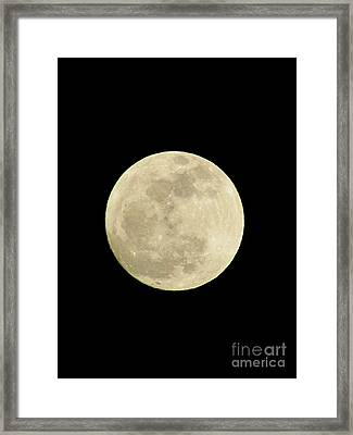 The Man In The Moon Framed Print by Elizabeth Dow