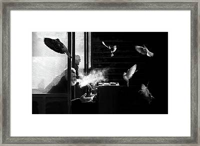 The Man Of Pigeons Framed Print