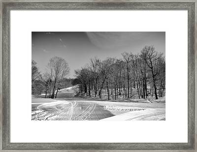 The Many Textures Of Mccauley Mountain - Old Forge New York Framed Print by David Patterson