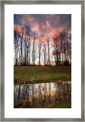The Marsh Framed Print by Eti Reid