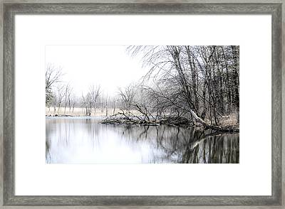 The Marsh Framed Print by Julie Palencia