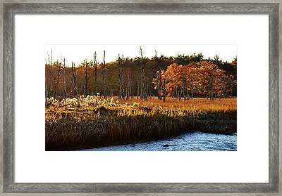 Framed Print featuring the photograph The Marsh by Paul Noble