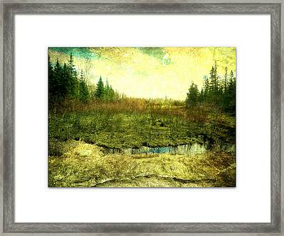 The Marshland  Framed Print by Dianne  Lacourciere