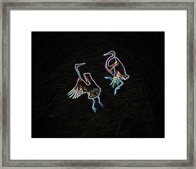 The Mating Dance Framed Print by Nancy Werner and Mike Flake