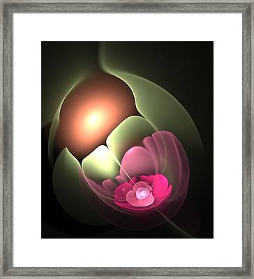 The Matrix Of Life Framed Print by Svetlana Nikolova