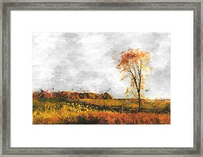 The Meadow Tree - Pt01 Framed Print by Variance Collections