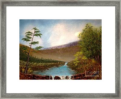 The Meadows Framed Print