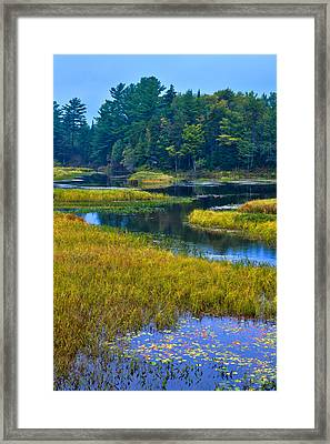 The Meandering Moose River - Old Forge New York Framed Print by David Patterson