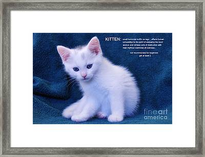 The Meaning Of A Kitten Framed Print