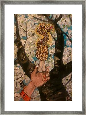 The Measurer Framed Print by Alexandria Weaselwise Busen