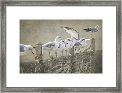 The Messenger Game Framed Print