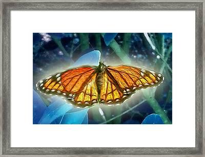 The Metamorphosis Framed Print