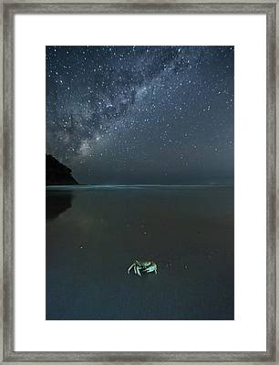 The Milky Way Above A Crab On A Beach Framed Print