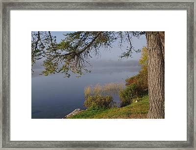 The Mist Will Soon Be Gone Framed Print