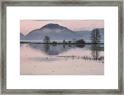 The Misty Mississippi Framed Print by Theo