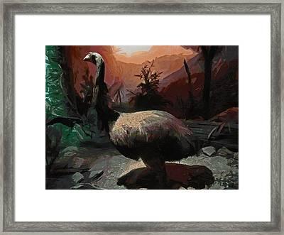 The Moa Framed Print by Steve Taylor