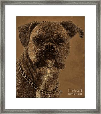 The Modern Boxer Bulldog Framed Print by Lesa Fine