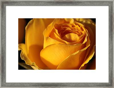 The Moment Framed Print by Connie Handscomb