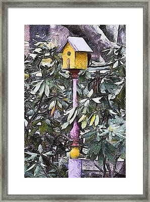The Monkey's Garden Framed Print by Trish Tritz