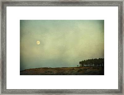 The Moon Above The Trees Framed Print