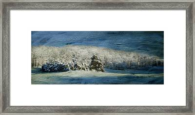 The Morning After Series II Framed Print by Kathy Jennings