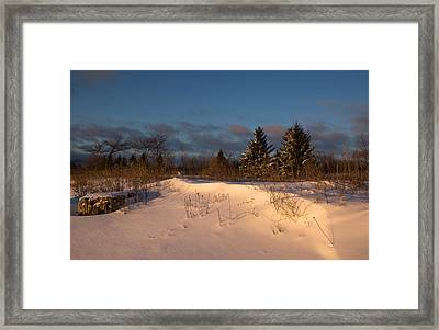 The Morning After The Snowstorm Framed Print by Georgia Mizuleva