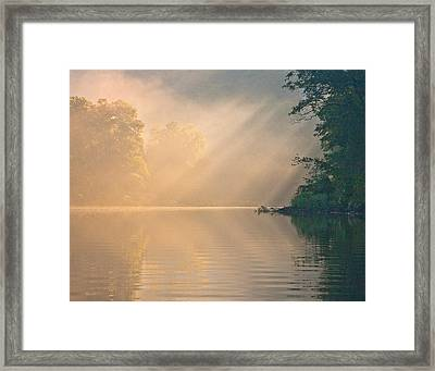 Framed Print featuring the photograph The Morning After by Tom Cameron