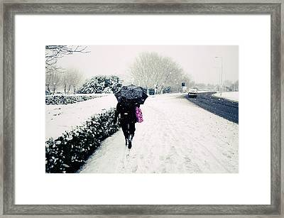 The Morning Commute Framed Print