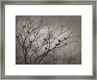 The Morning Of Framed Print